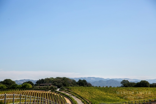 Healdsburg-Wedding-Photography-02